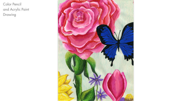 pink flower and butterfly drawing and painting